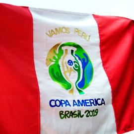 Bandera Copa America